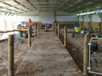 171 - 14X35X3 Farm-shed|Storage Shed| Garage Shed |Wide Span Shed | Workshop | Steel shed